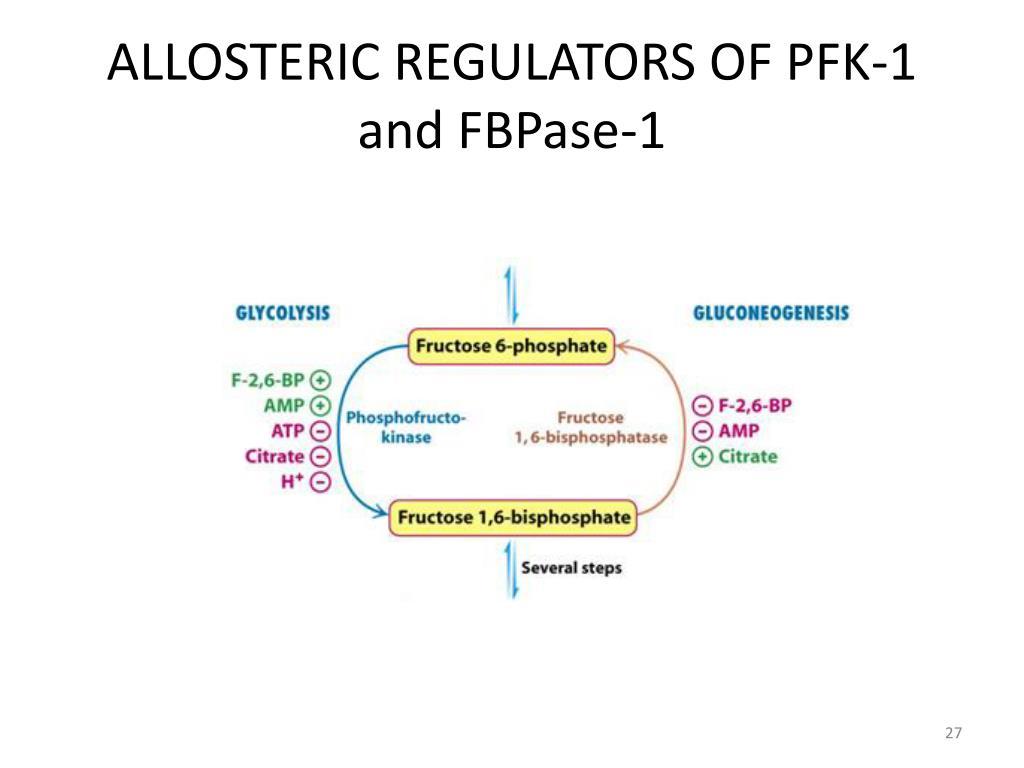 ALLOSTERIC REGULATORS OF PFK-1 and FBPase-1