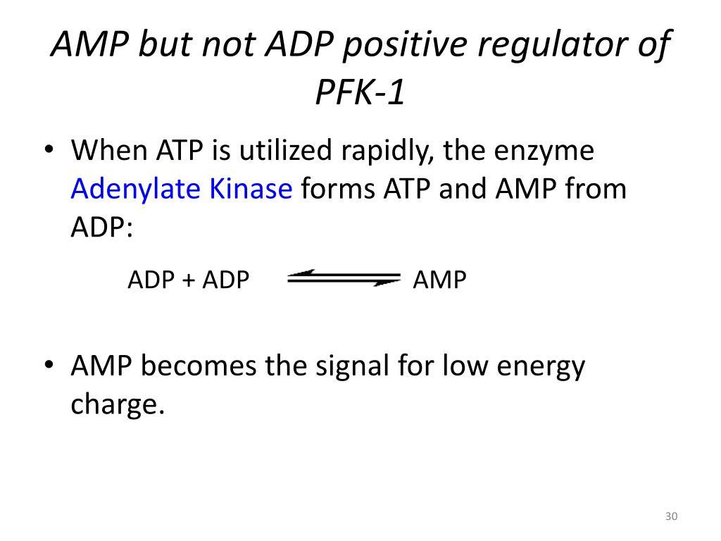 ADP + ADP   ATP + AMP