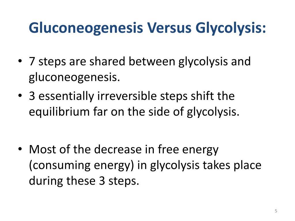 Gluconeogenesis Versus Glycolysis: