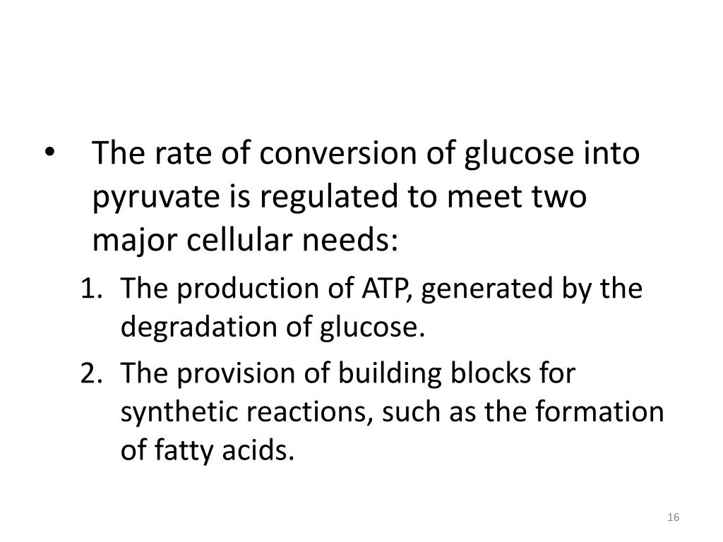The rate of conversion of glucose into pyruvate is regulated to meet two major cellular needs: