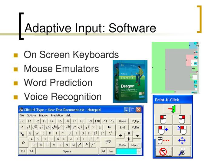 Adaptive Input: Software