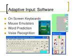 adaptive input software