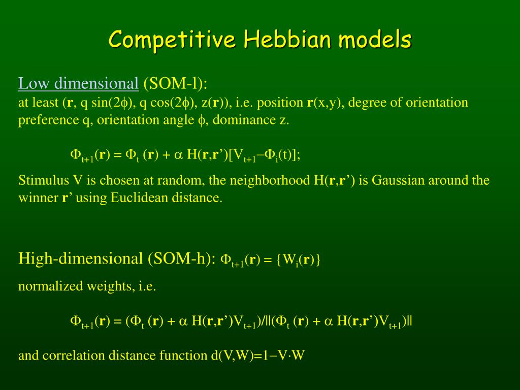 Competitive Hebbian models