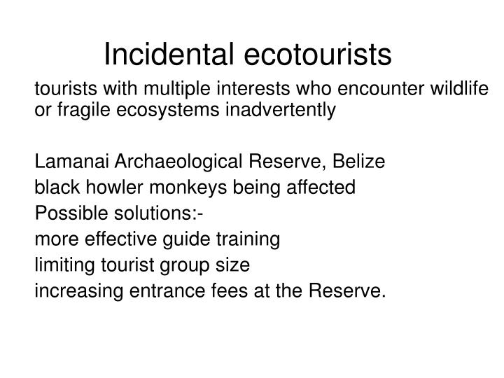 Incidental ecotourists