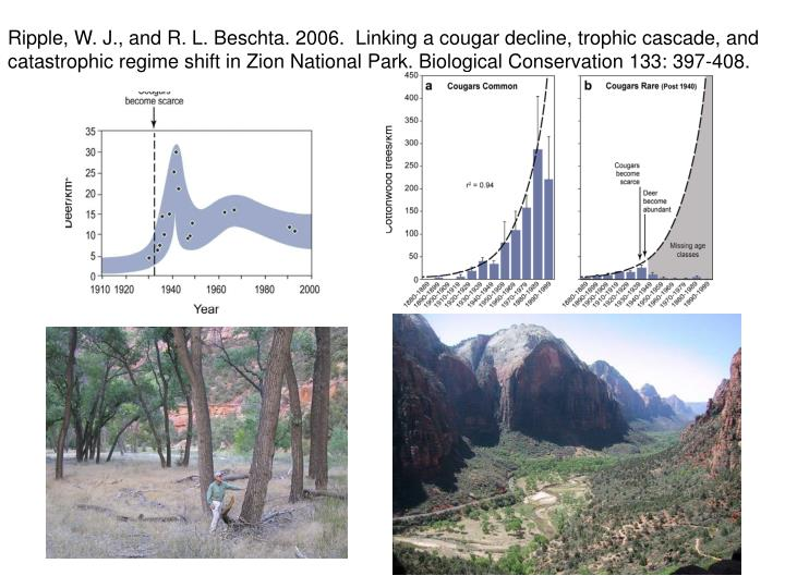 Ripple, W. J., and R. L. Beschta. 2006.  Linking a cougar decline, trophic cascade, and catastrophic regime shift in Zion National Park. Biological Conservation 133: 397-408.