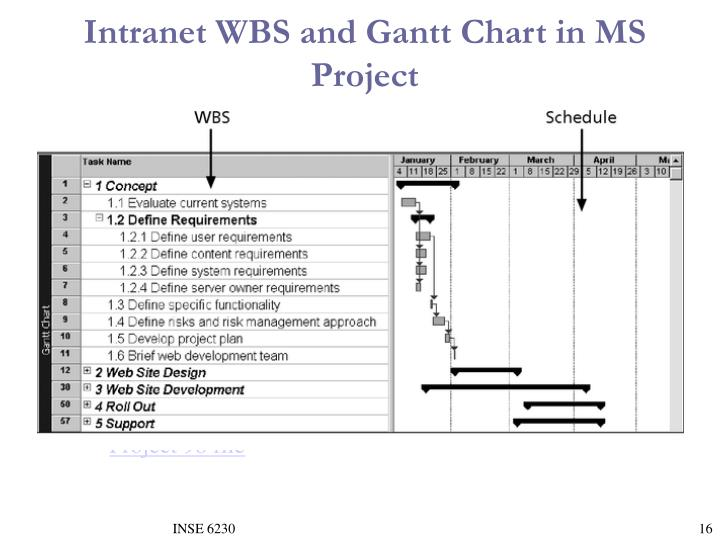 Intranet WBS and Gantt Chart in MS Project