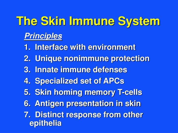 The Skin Immune System
