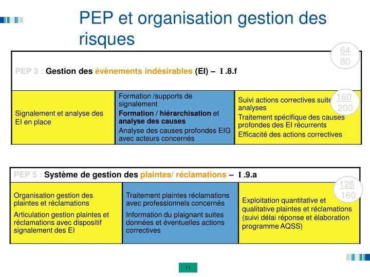 PEP et organisation gestion des risques