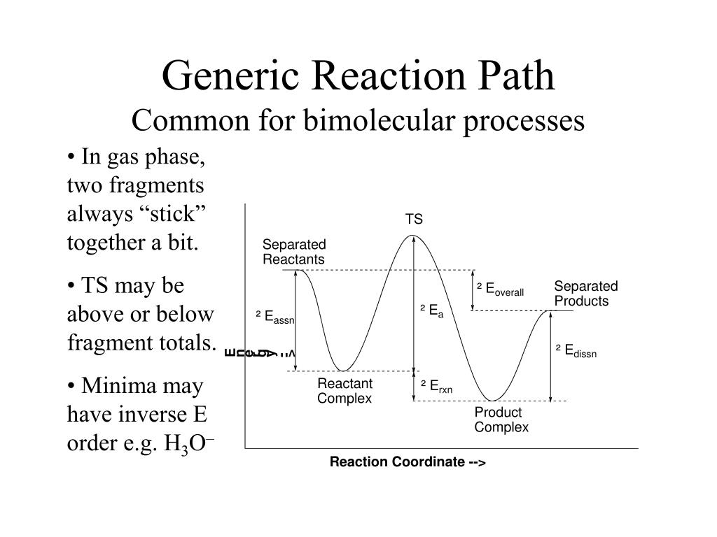 Generic Reaction Path