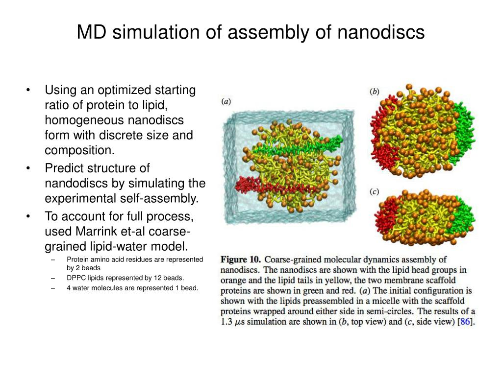 MD simulation of assembly of nanodiscs