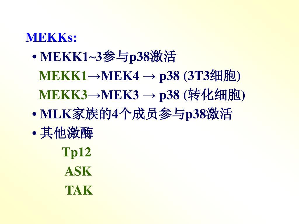 MEKKs: