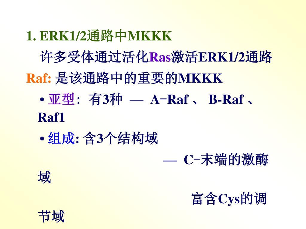 1. ERK1/2