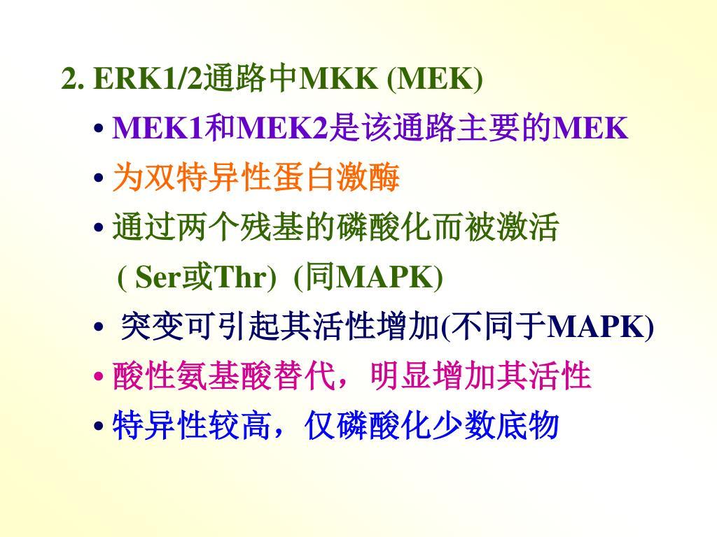 2. ERK1/2