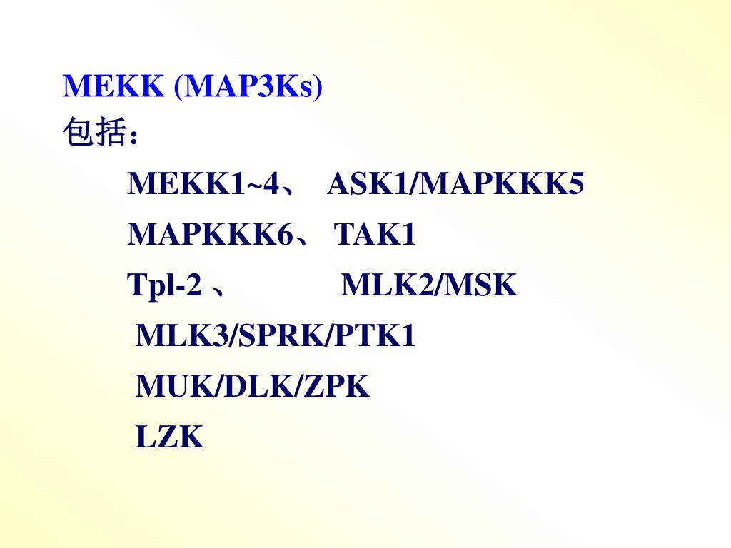 MEKK (MAP3Ks)