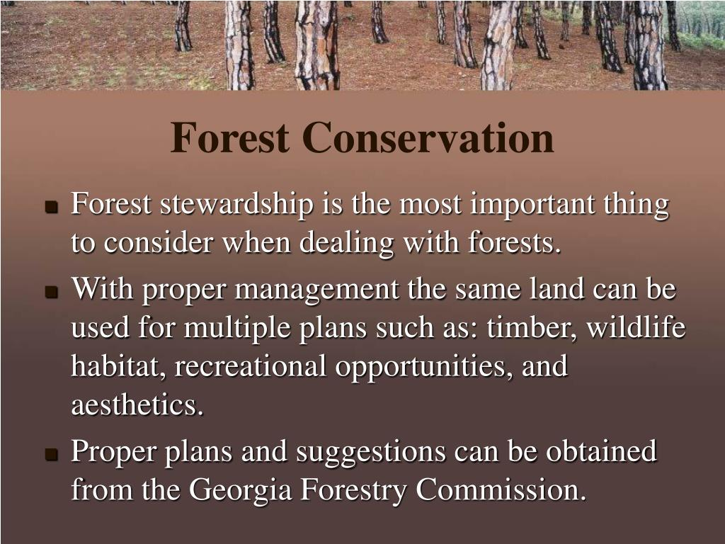 Forest Conservation