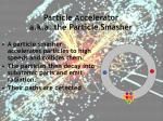 particle accelerator a k a the particle smasher