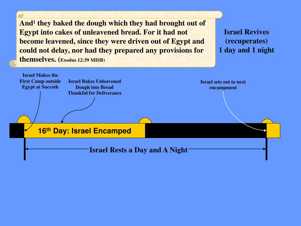 And¹ they baked the dough which they had brought out of Egypt into cakes of unleavened bread. For it had not become leavened, since they were driven out of Egypt and could not delay, nor had they prepared any provisions for themselves. (