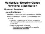 multicellular exocrine glands functional classification36