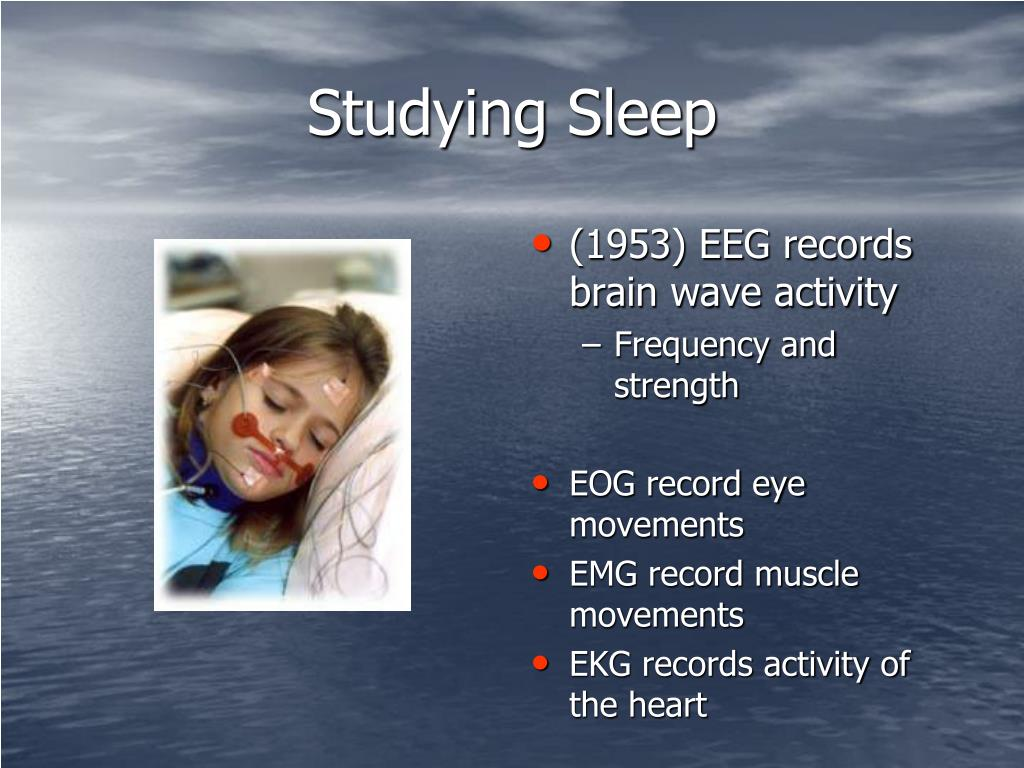 Studying Sleep