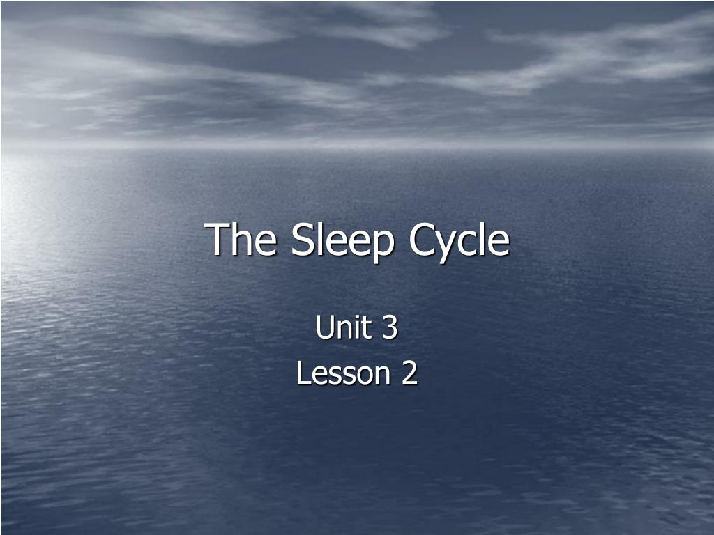 The Sleep Cycle