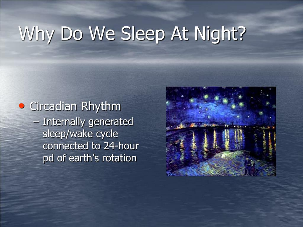 Why Do We Sleep At Night?