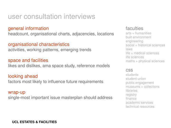 user consultation interviews