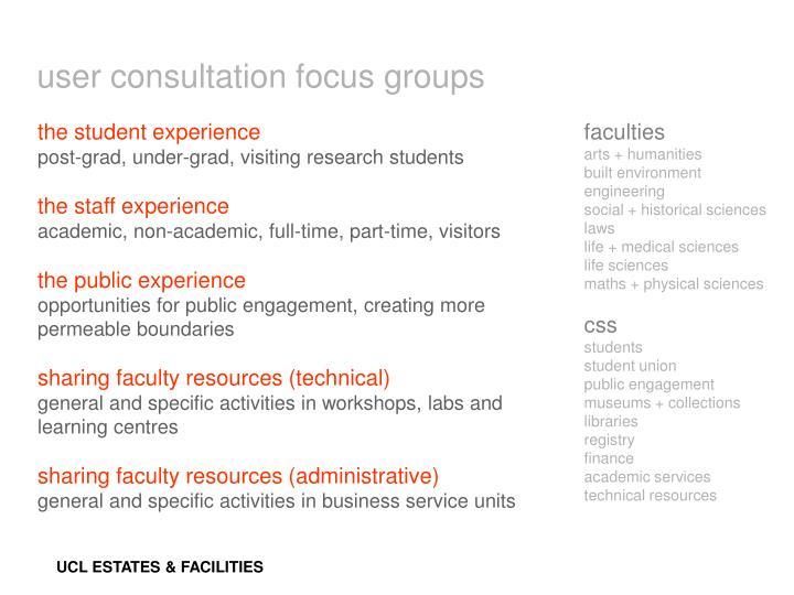 user consultation focus groups