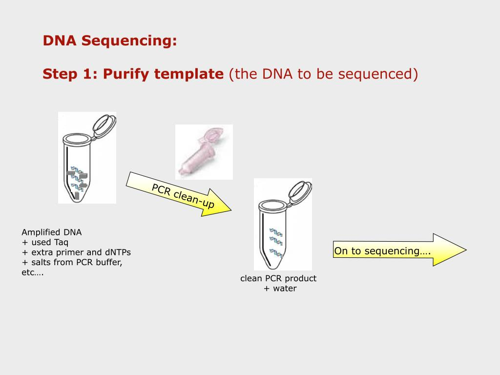 On to sequencing….