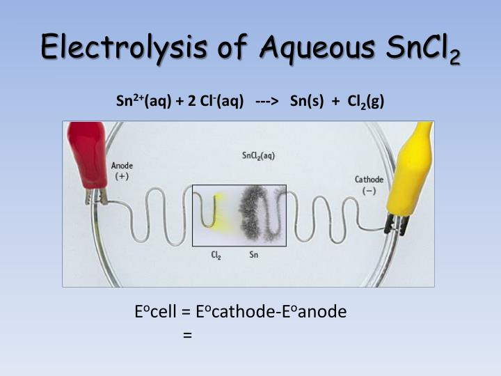 Electrolysis of Aqueous SnCl