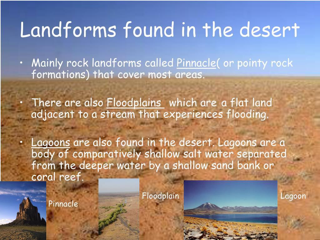 Landforms found in the desert