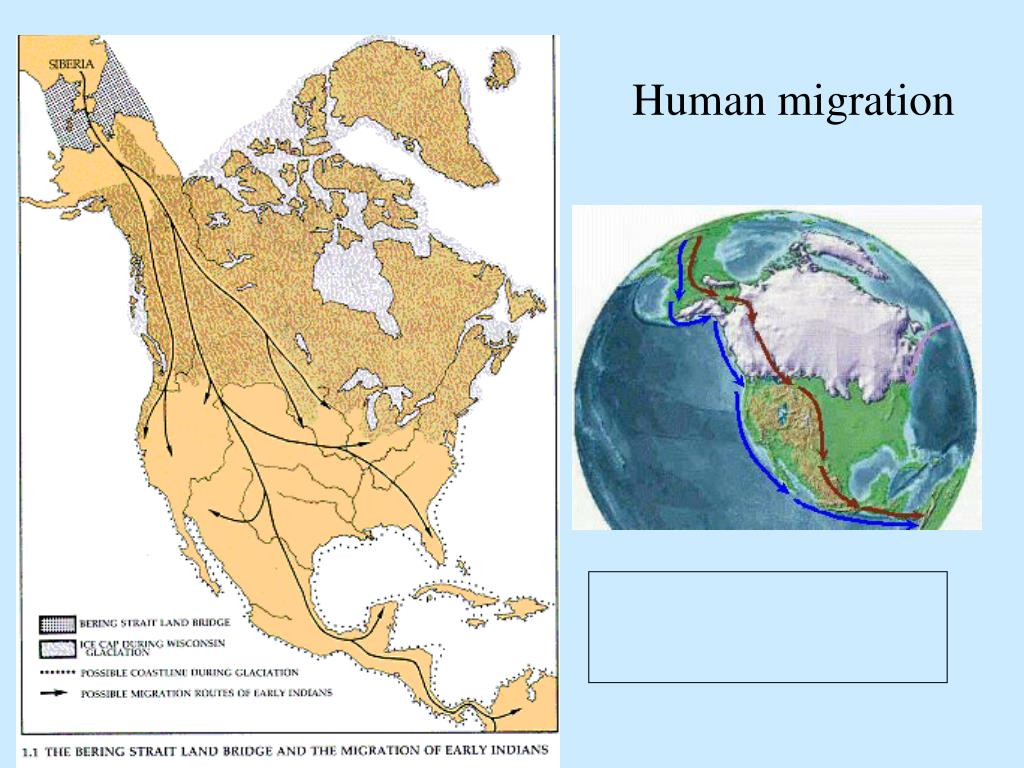 human migration A recent report in bmc biology indicates that modern humans first arrived in southern east asia 60,000 years ago and settled the rest of east asia from there this early date and migration route has significant implications for our understanding of the origins of present-day human populations the.