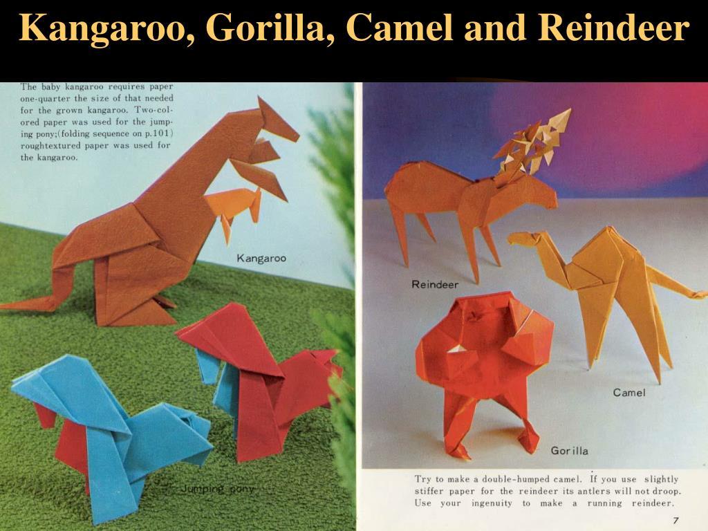 Kangaroo, Gorilla, Camel and Reindeer