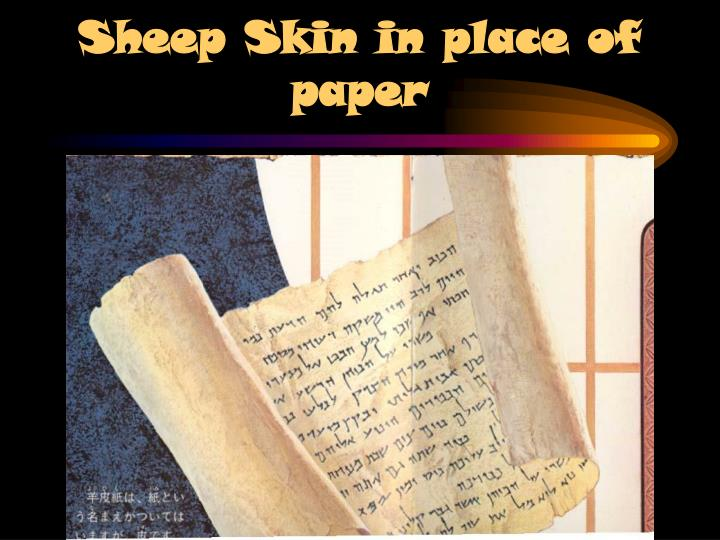 Sheep skin in place of paper l.jpg