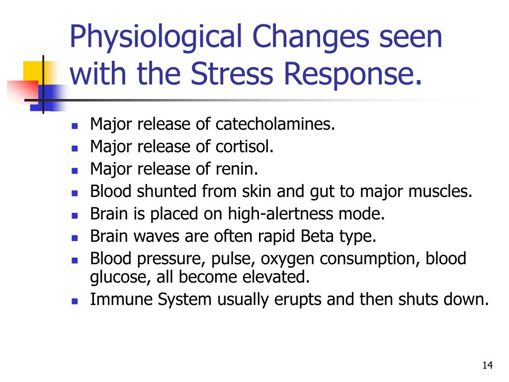 investigating the physiological response of anxiety The process of physiological stress response starts from the moment the body realizes the presence of the stressor, followed by the sending of signals to the brain.