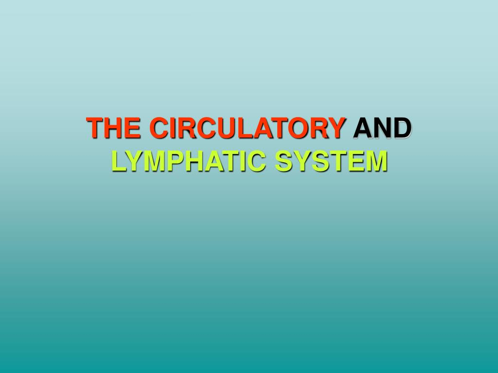THE CIRCULATORY