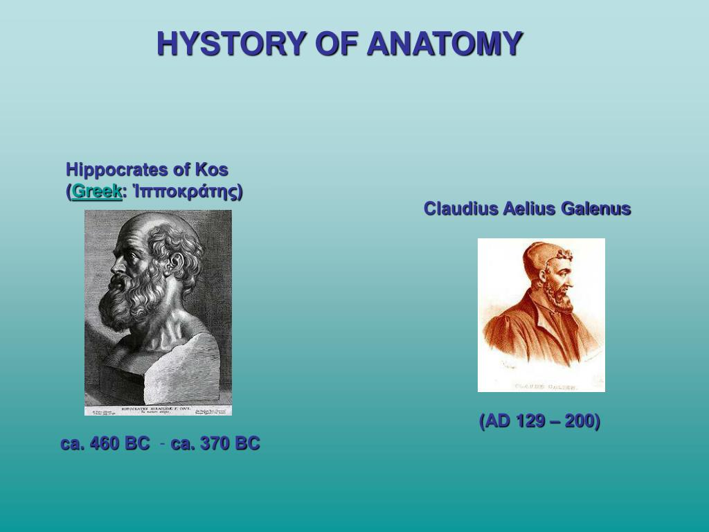 HYSTORY OF ANATOMY
