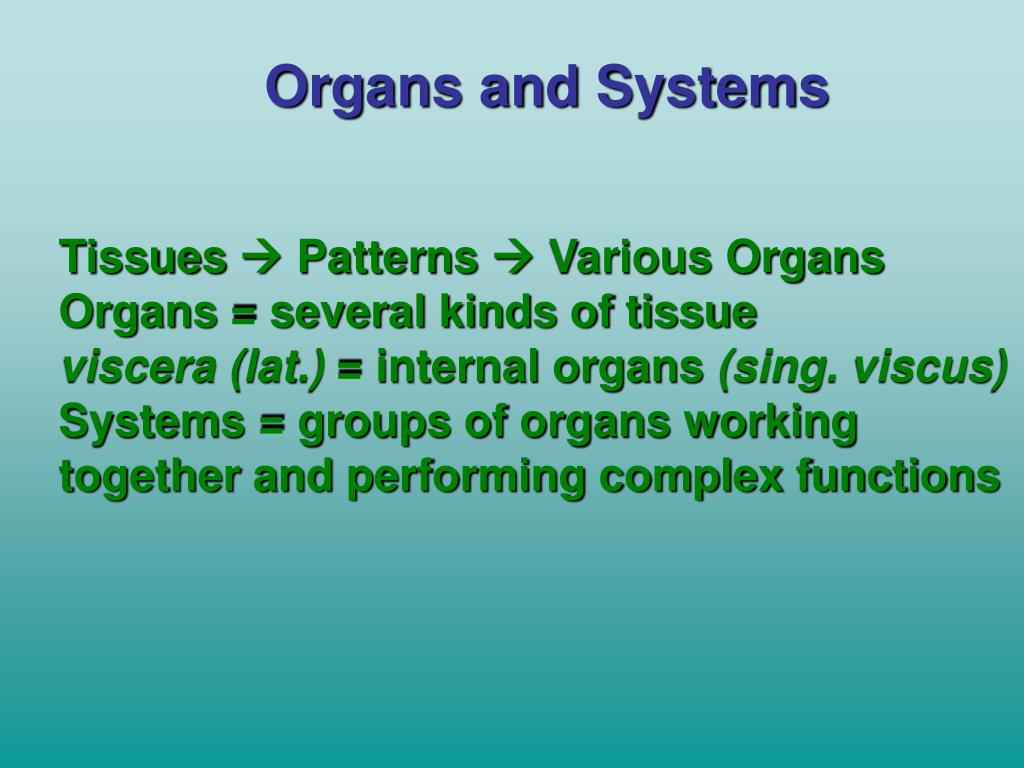 Organs and Systems