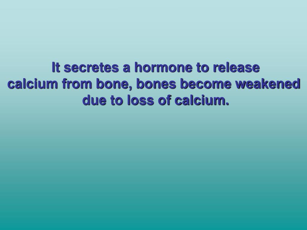 It secretes a hormone to release