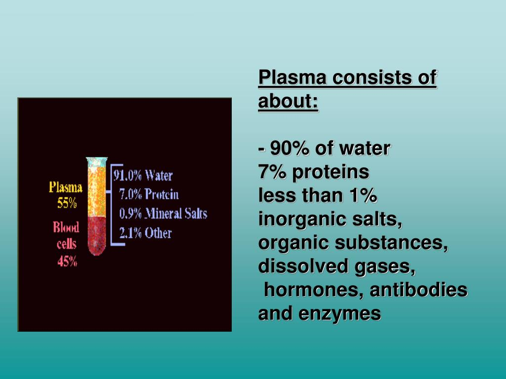 Plasma consists of about: