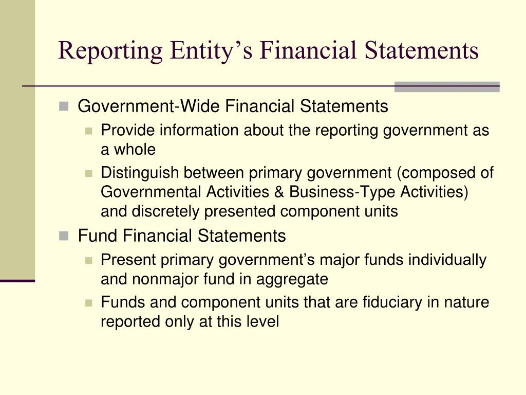 Reporting Entity's Financial Statements
