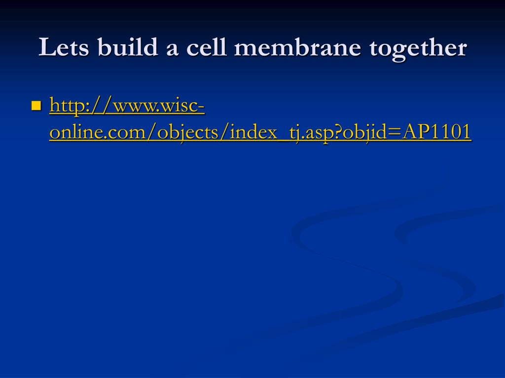 Lets build a cell membrane together