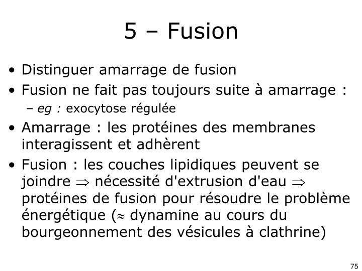 5 – Fusion