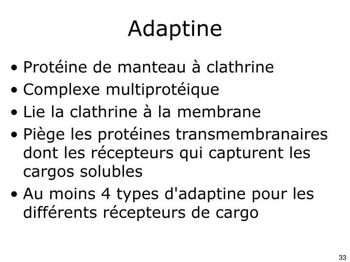 Adaptine
