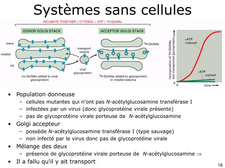 Systèmes sans cellules