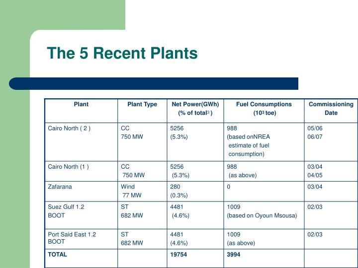 The 5 Recent Plants