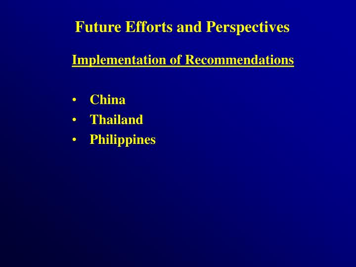 Future Efforts and Perspectives