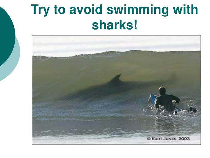 Try to avoid swimming with sharks l.jpg