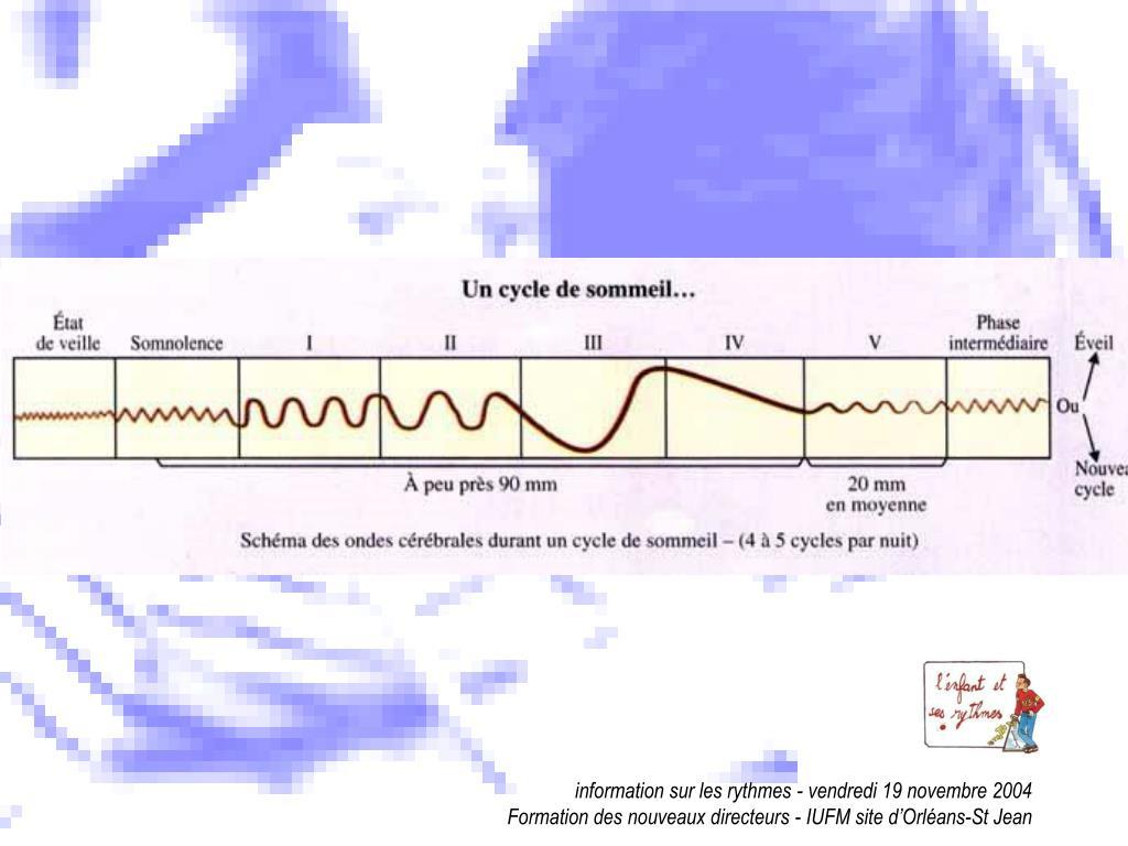 information sur les rythmes - vendredi 19 novembre 2004