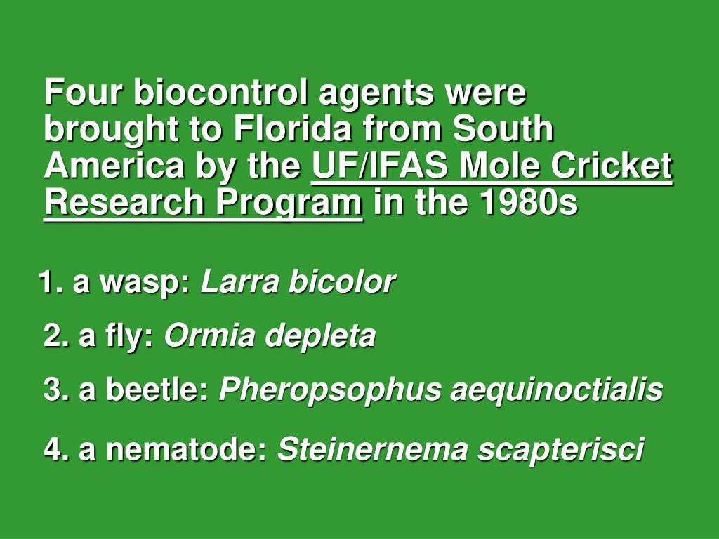 Four biocontrol agents were    brought to Florida from South America by the