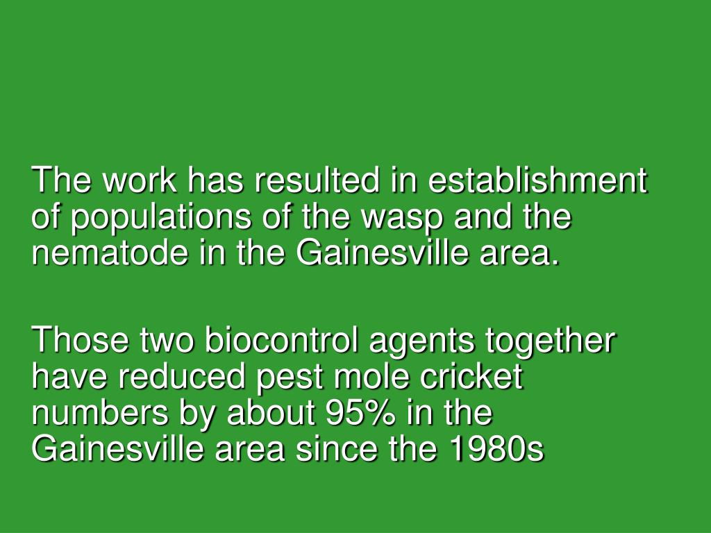 The work has resulted in establishment of populations of the wasp and the nematode in the Gainesville area.